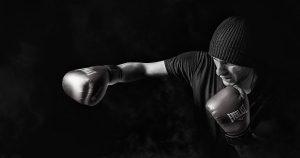 Aries boxer