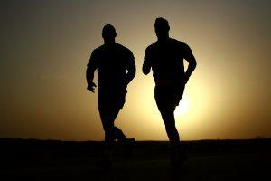 Gemini runners